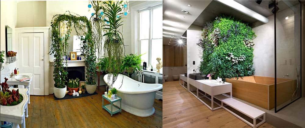 Растения в интерьере дизайн ванной 2018
