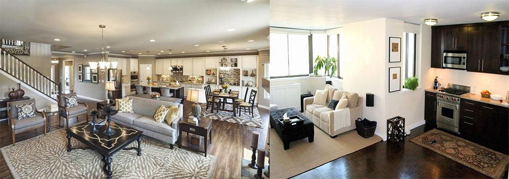 Зонирование с помощью ковров интерьер кухни гостиной