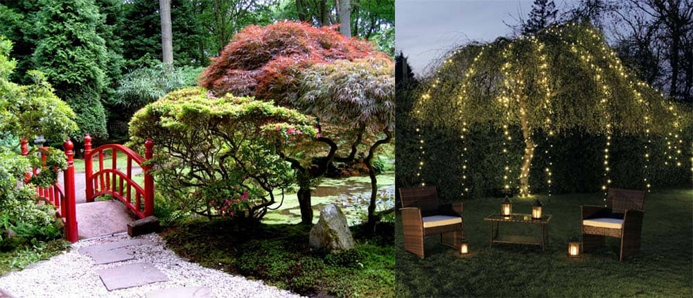 Прекрасные примеры современных садов Ландшафтный дизайн 2018 необычные растения и великолепное освещение