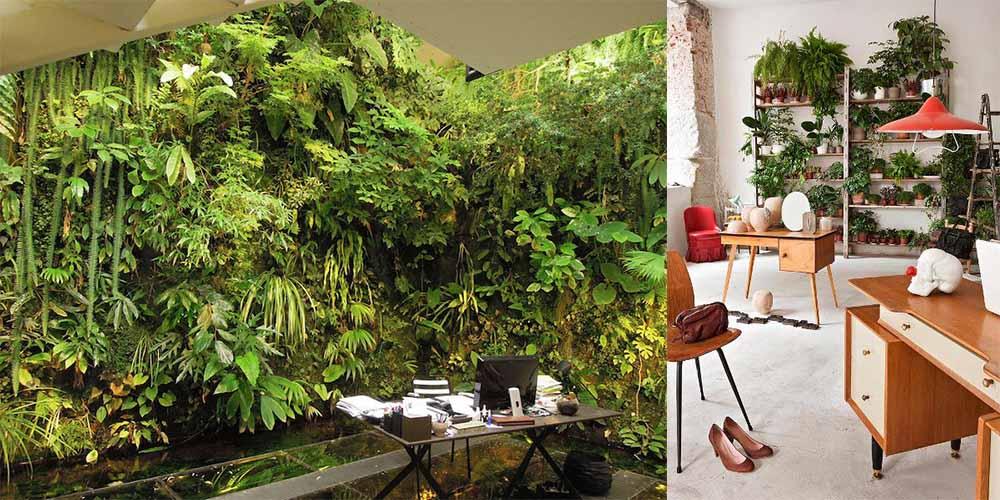 Растительные стены - супер биофильный тренд Кабинет 2018
