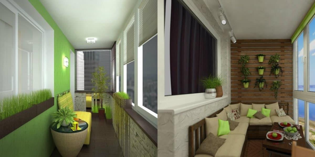 лоджии 2019: комнатные растения