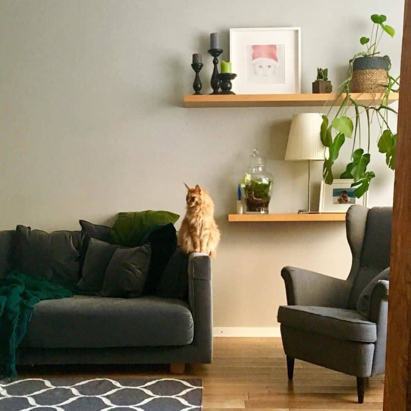 Экостиль-в-интерьере -экостиль в интерьере квартиры фото